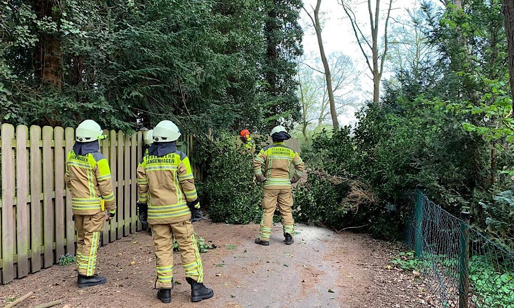 Baum umgestürzt, versperrt Zufahrt